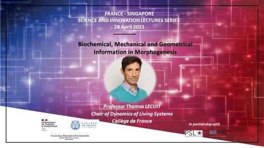 Conférence Thomas Lecuit 4